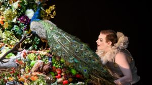 Un homme avec une collerette regarde un amas de fruits et fleurs sur lequel est posé un paon